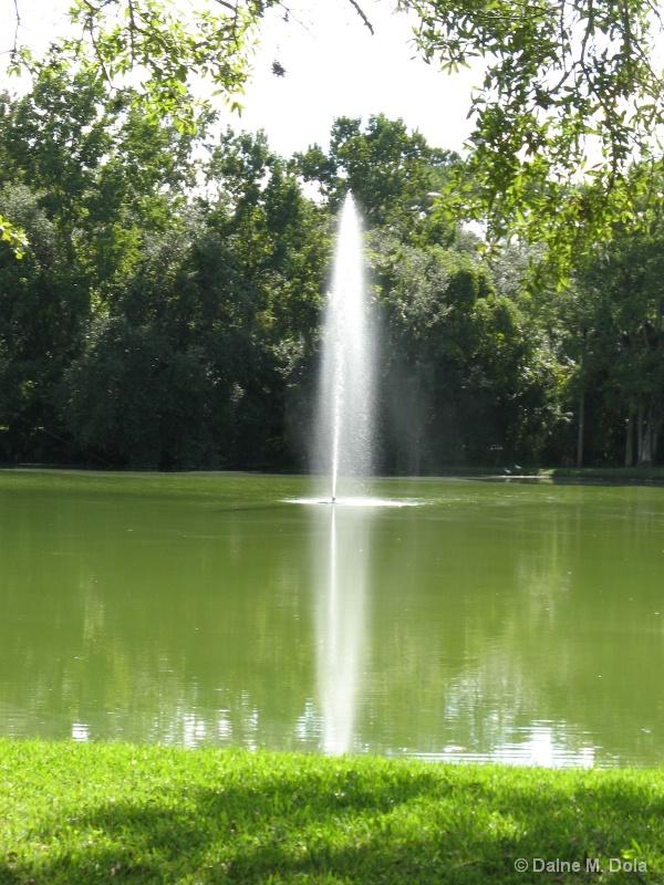 A Park Pond