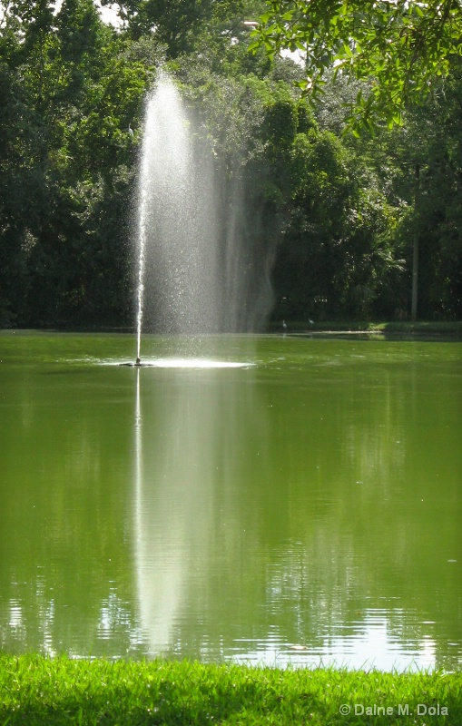 Water Reflections II
