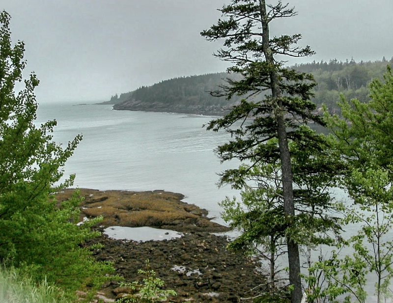 Coastal Maine II