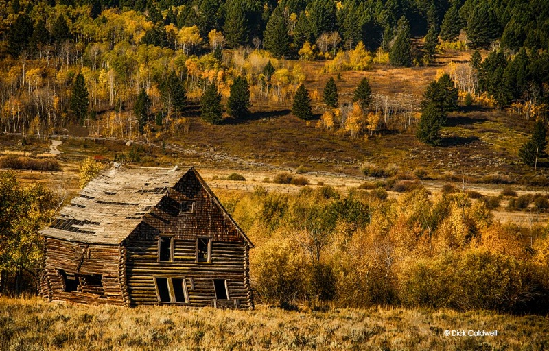 Dilapidated barn in the golden landscape
