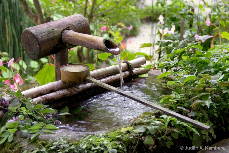 tea garden fountain