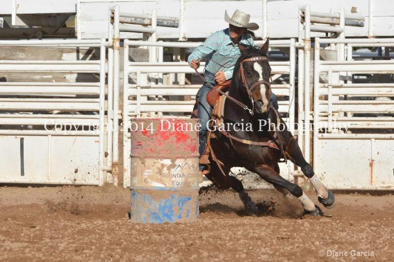 amanda butler jr high nephi 2014 3