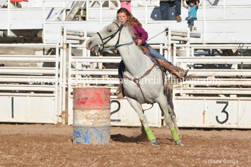 bailey thomas jr high nephi 2014 3