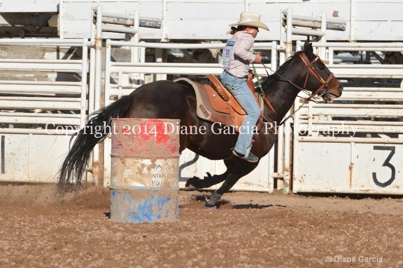 brylee allan jr high nephi 2014 1
