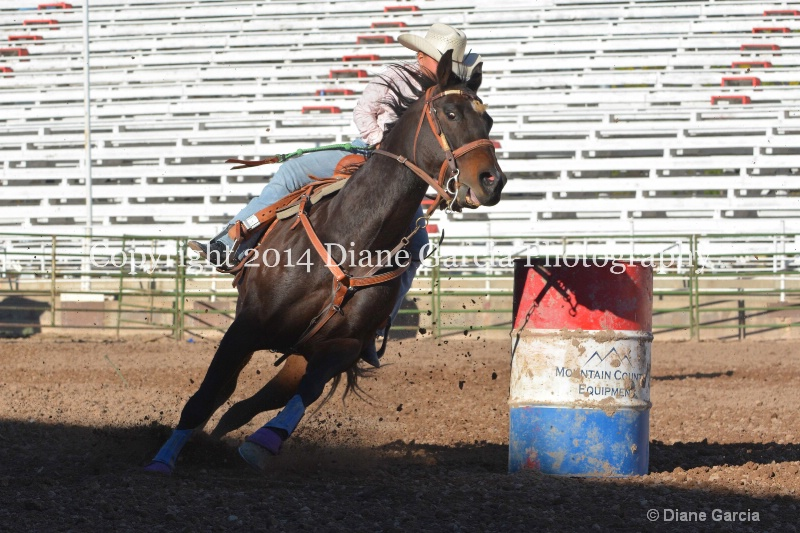 brylee allan jr high nephi 2014 2