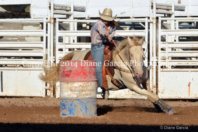 courtney halverson jr high nephi 2014 2