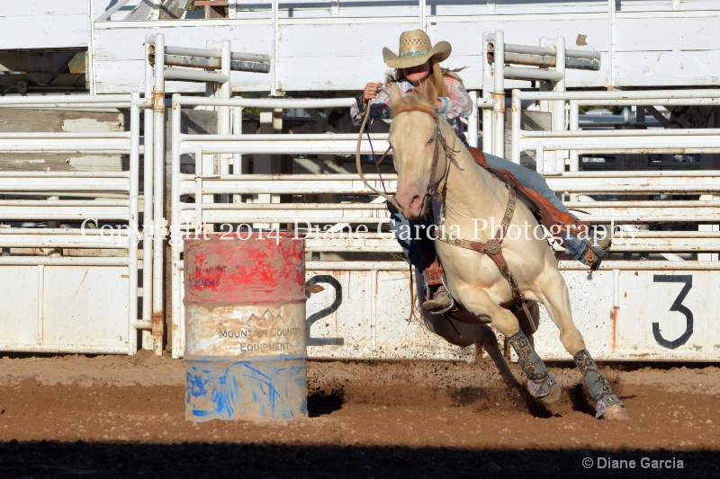courtney halverson jr high nephi 2014 4