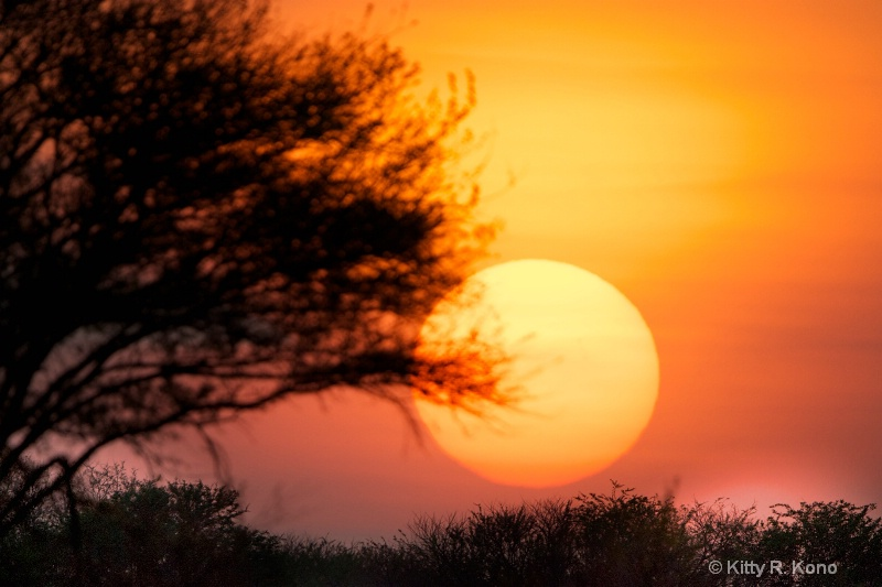 sunrise at ndutu 447