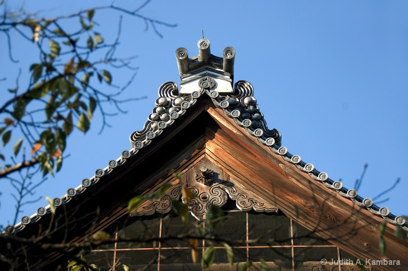 Nanzenji Temple roof