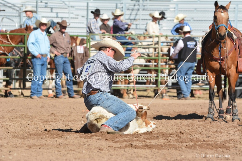 colton oliver jr high nephi 2014 17
