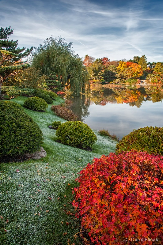 Fall at the Garden