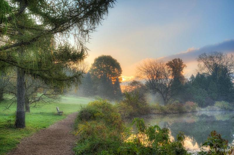 A Quiet Autumn Morning at Morton Arboretum