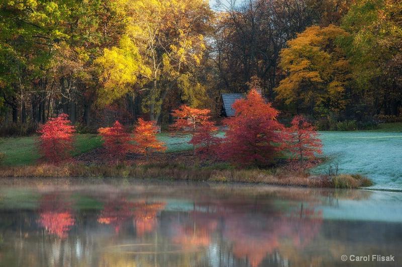 Autumn Reds