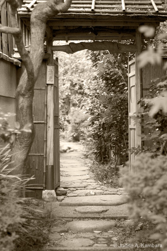 glimpse into a Japanese garden (b&w)
