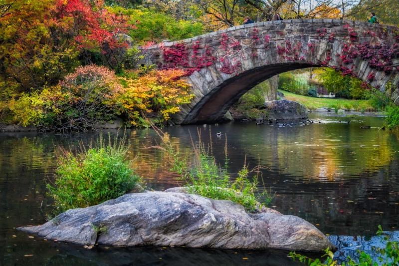 Central Park Autumn Colors