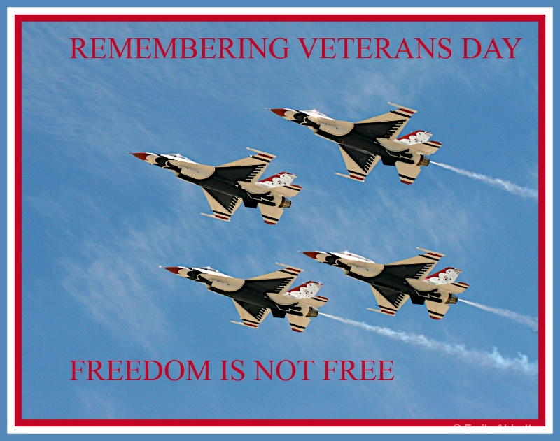Remembering Veterans Day