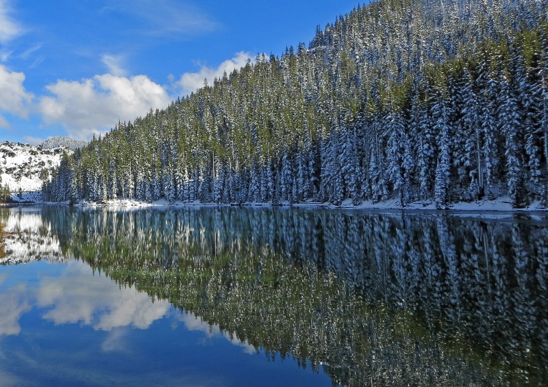 Reflections Devil's Lake Bend, Orego