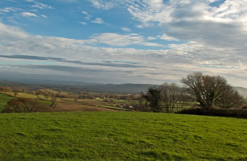 Across Marshwood Vale
