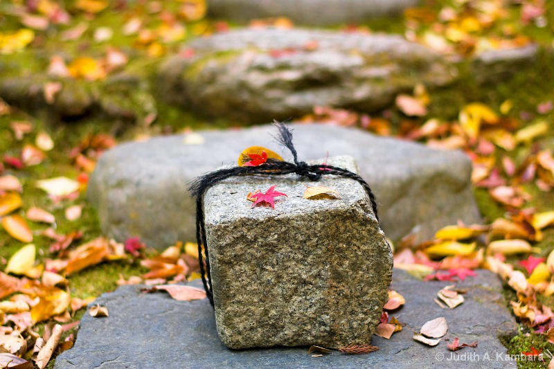 Honen-in stone in autumn