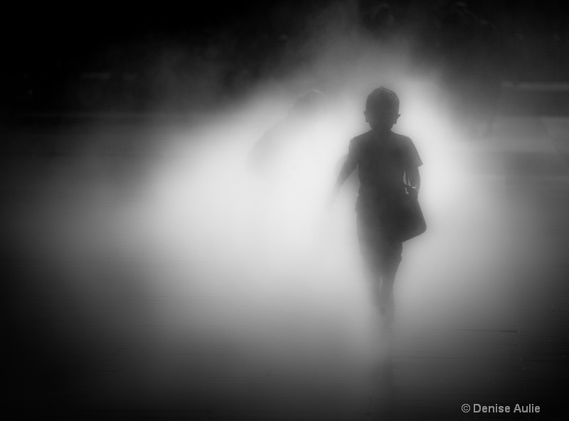 In the mist 12