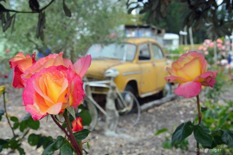 Roses & Wrecks 2