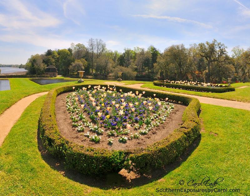 Middleton Gardens