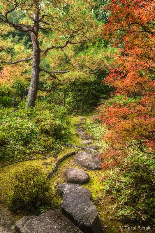 A Quiet Little Path