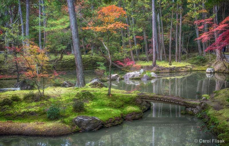 Painterly Moss Garden