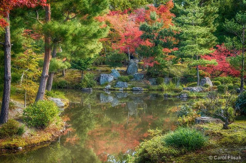 Autumn at Toji-in Temple Gardens ~ Japan
