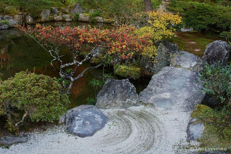 Dry Garden Meditation