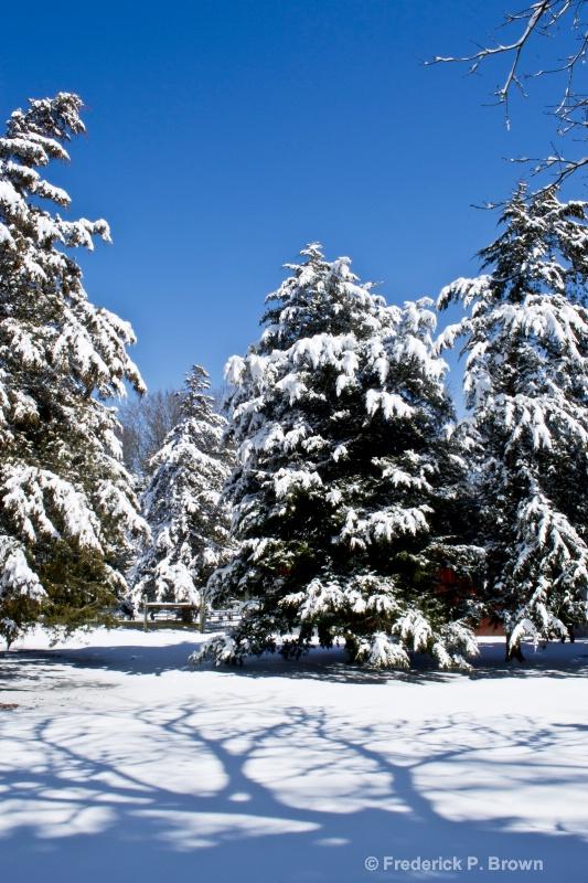 Blue Sky and Snow!