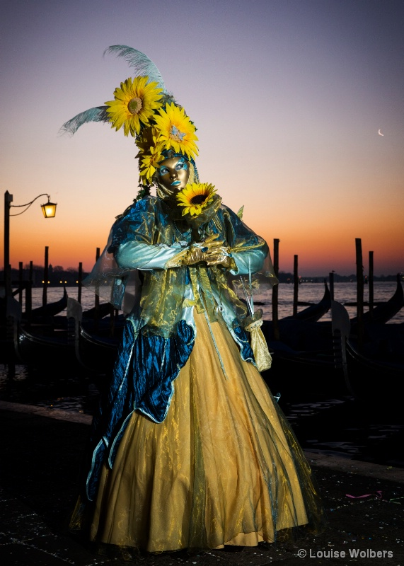 Sunflower in Venice