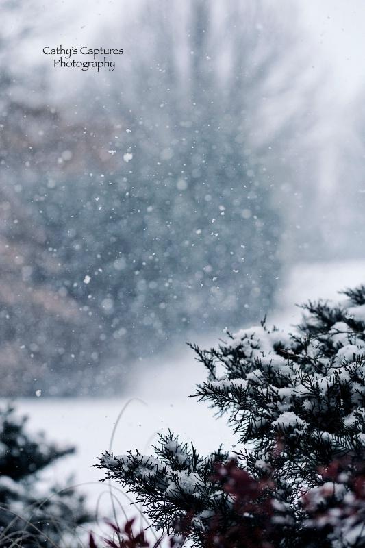 ~Snowing during Tornado Season?