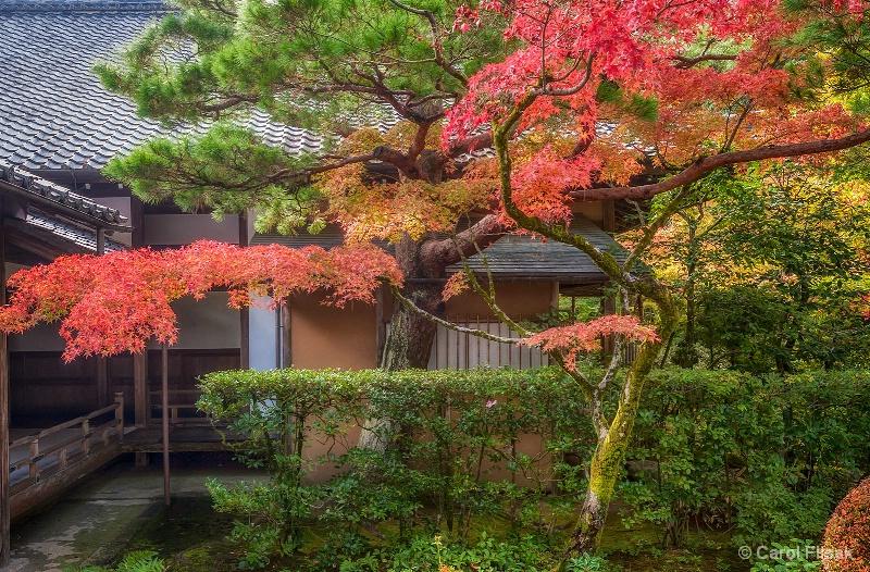 Inner Garden Glory