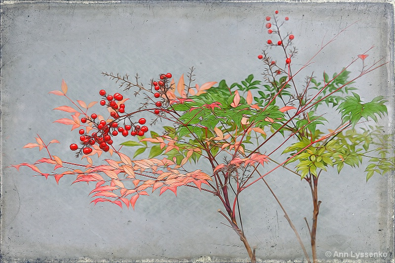 Red Berries by the Wall