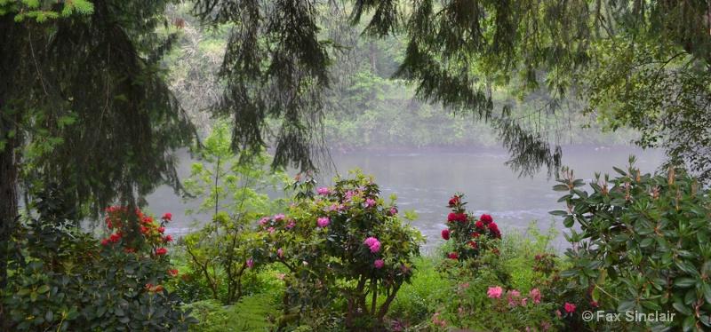 River Rhodies