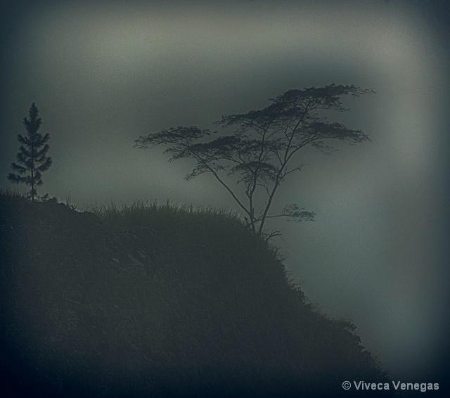 Gloomy End