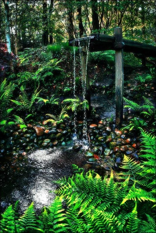 Wood Waterfall