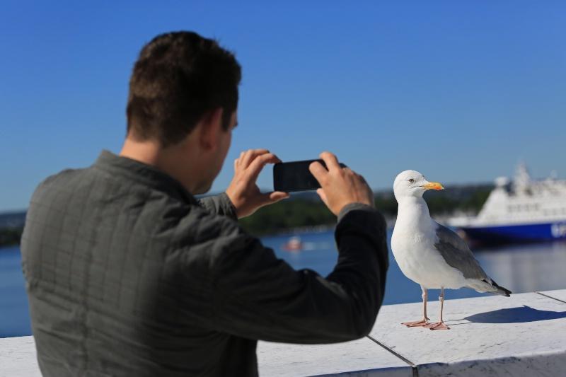 Celebrity Spotting