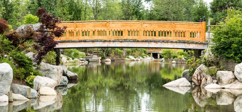 Arched Bridge #3