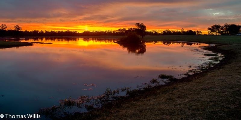 East Texas ranch pond