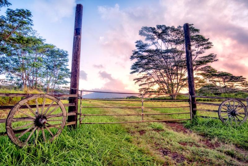 Rural Kauai