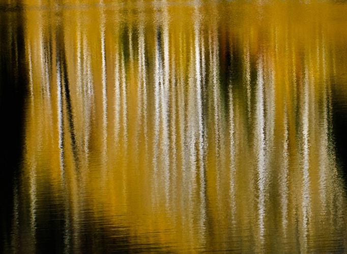 Reflections in Hinman Lake