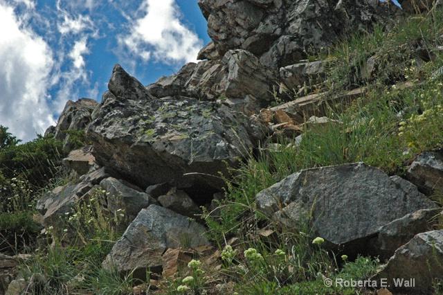 rocks in Montana