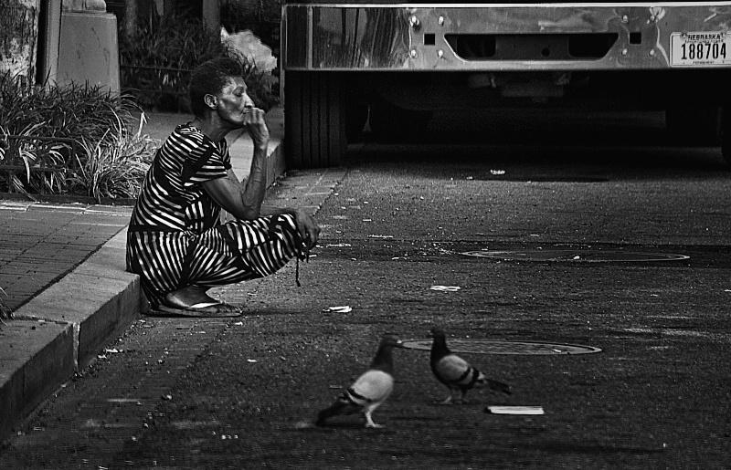 Homeless an smoke and pigeons