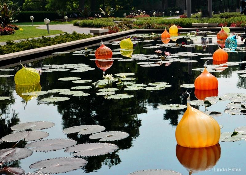 Floating Lanterns at Botanical Garden