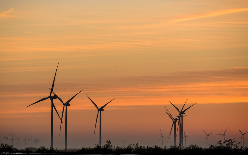 Dawn at the Wind Farm