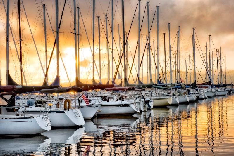 Backlit Marina