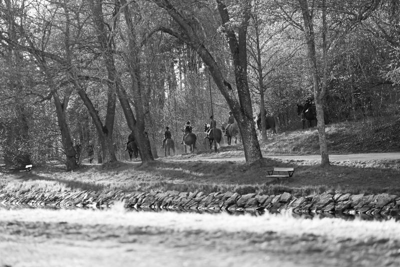 Riders in Fall