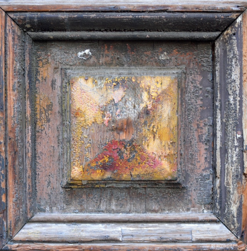 Patina on an Old Door Panel dsc 6529